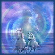 Par_Amor_Cavalos_Golfinhos