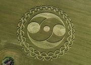 crop circle with torus aspect