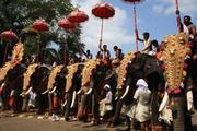 El Pooram de Thrissur enfervoriza a los hindúes