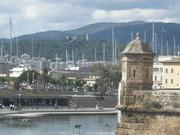 Palma Mallorca highlights and Valldemossa
