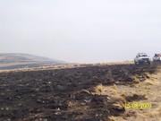 Incendion-Las-Albacas 038
