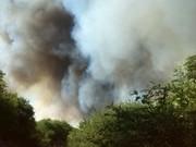Incendio forestal El Tropiezo