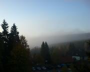Morgennebel im Hochharz