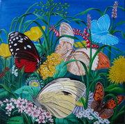 Fest der Schmetterlinge / Party of Butterflies