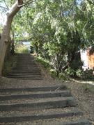 Mount Washington Secret Stairs Walk