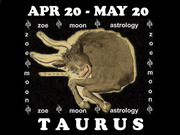 ZOE Taurus