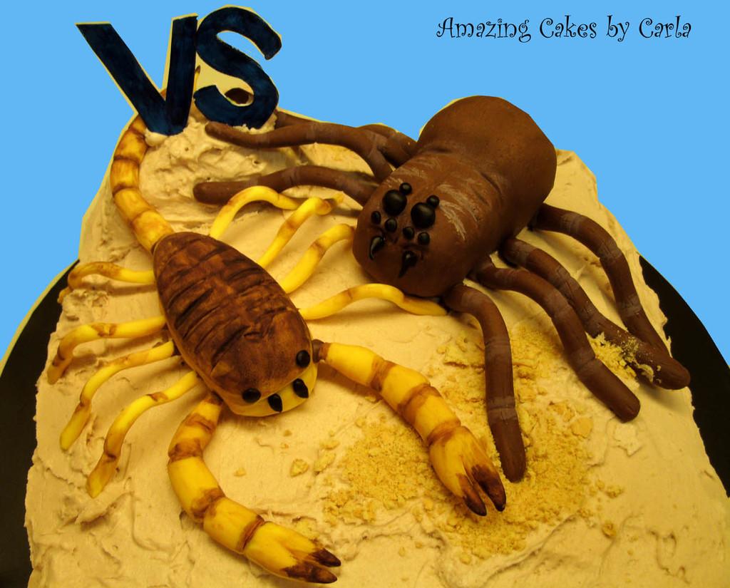 Scorpion VS Tarantula