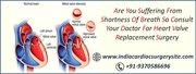 Heart Valve Replacement Surgery in India At Affordable Cost