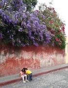 children under blossoms