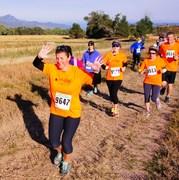 2014 Great Pumpkin Run