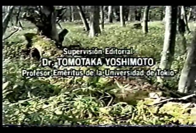 La vida en el suelo (Documental)