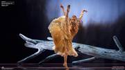 The Tempest - Dutch National Ballet