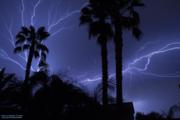 Lightning (2) 07-26-14