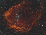 The Flying Bat Nebula