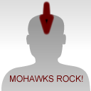 Rock the Hawk