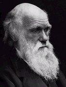 Darwin award stories