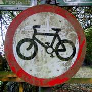 Biker punks