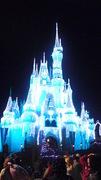 Disney World Lovers