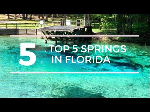TOP 5 SPRINGS in FLORIDA with a CAMPGROUND