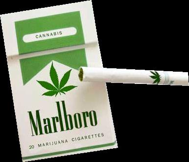 weed smokes-