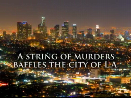 MURDER ON THE DOWN LOW  PAMELA SAMUELS YOUNG  BOOK TRAILER