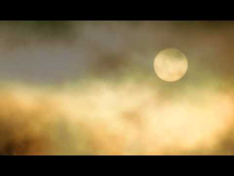Raised by Wolves Series by Jennifer Lynn Barnes Book Trailer