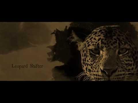 Leopard's Fury by Christine Feehan Book Trailer