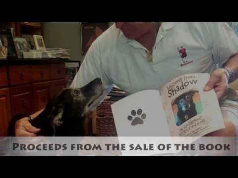 Lessons from Shadow by Wally Bregman Book Trailer