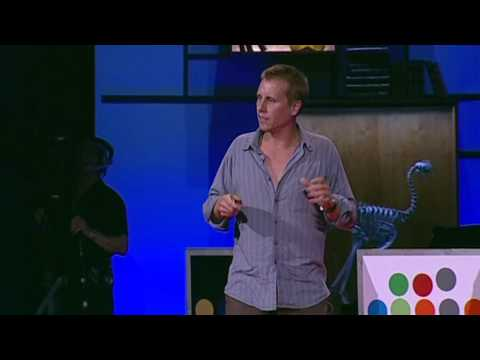 Beau Lotto: Optical illusions show how we see TED TALK