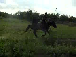 Horseback archery training