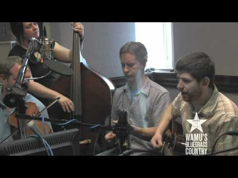 Foghorn Stringband - Flower From the Fields of Alabama [Live at WAMU's Bluegrass Country]