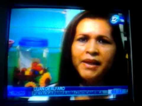 """Reportaje especial sobre """"bullying"""" Canal 12, CCSA"""