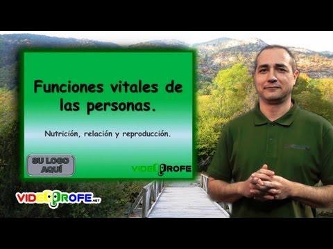 3º Conocimiento del Medio: 04. Las funciones vitales de las personas Videoprofe.net