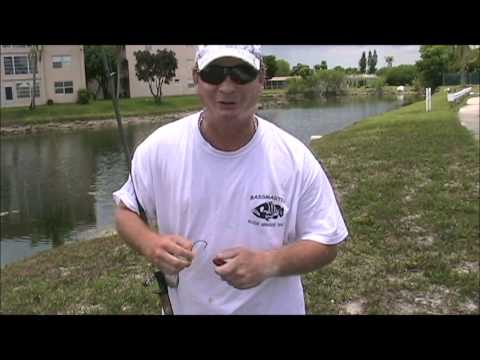 Topwater Fishing Vol. 2 - Snakeheads in South Florida