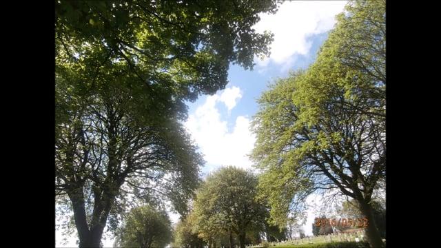 sky pics 3