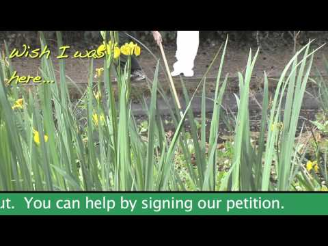 Save our outdoor education centres - Field Studies Council
