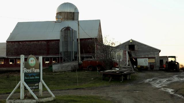 Meet Your Farmer - Reed Farm