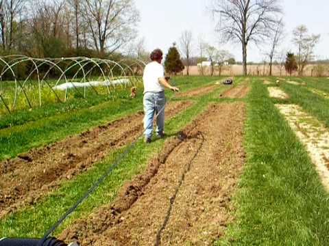 Boulder Belt Eco-Farm: How to Lay Drip Tape and Plastic Mulch by Hand, Pt 1