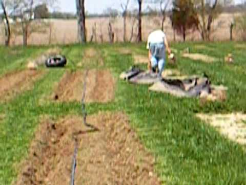 Boulder Belt Eco-Farm: How to Lay Drip Tape and Plastic Mulch by Hand, Pt 2