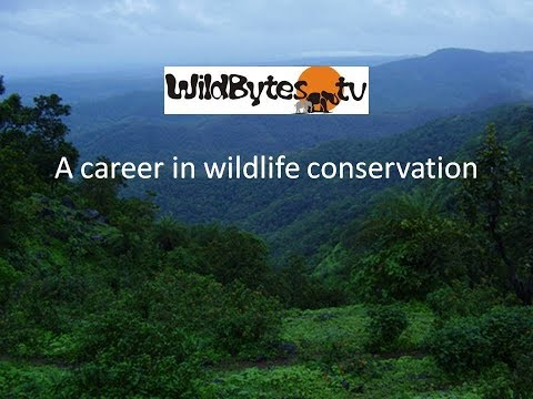 Wildlife Conservation as a career choice