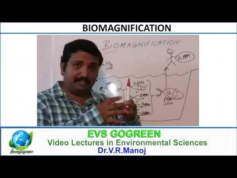 Biomagnification for Environmental Science & Engineering , IAS,UPSC ,NEET, CBSE