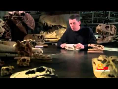 DINOSAURS - Predatory monsters - Documentary