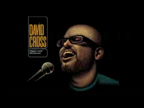 David Cross - I Can't Get Beer In Me (not the video)