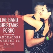 Live Band Christmas party