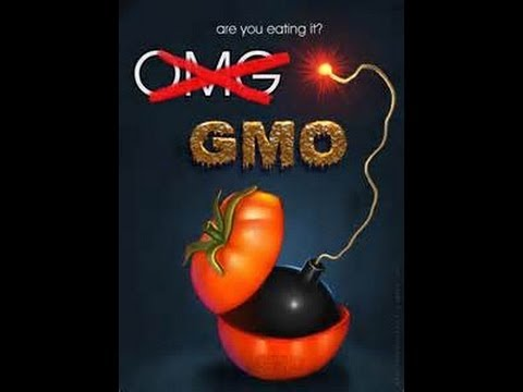 12 April 2013 Breaking News Genetically Modified Foods in America