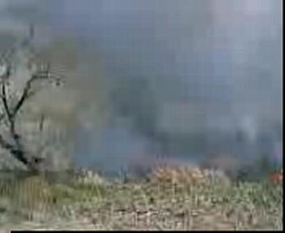 Incendio forestal 2