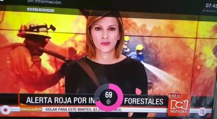 Incendio en villavicecio 2016