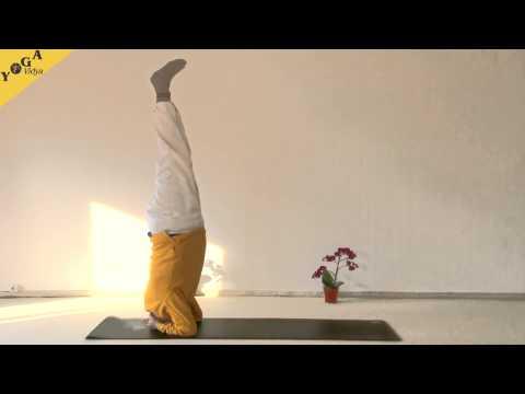 Yoga Video: Erlerne den Kopfstand oder Shirsasana Schritt für Schritt