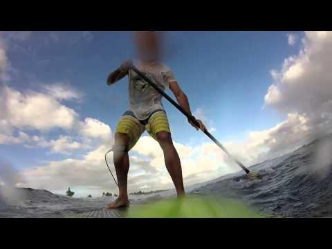 Sup Surfing Hobie 9'4