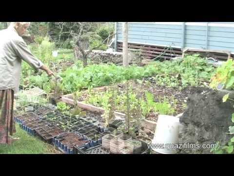 Sustainable Living on the Island of  Molokai - Preview